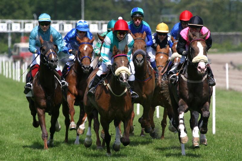 競馬レース